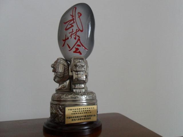 央视《武林大会》八卦掌年度总冠军