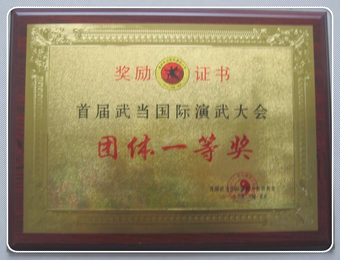 首届演武大会团体一等奖(3)
