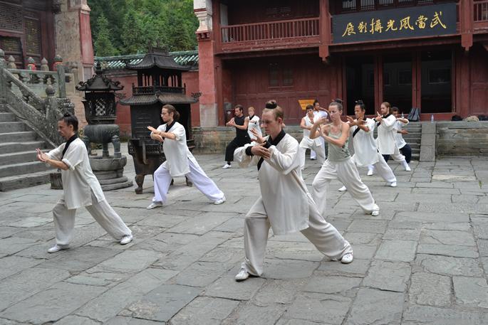 中央政治局委员刘延东视察武当山-寄厚望于我馆学员