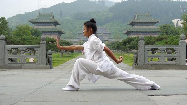 武当功夫 蔡召武教练太和拳-武当道家传统武术馆
