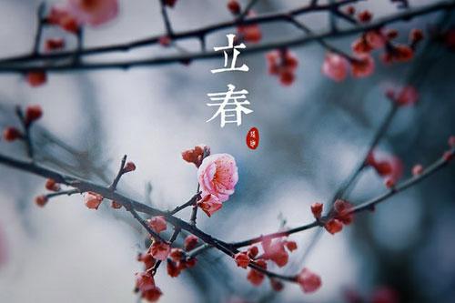 2015话立春
